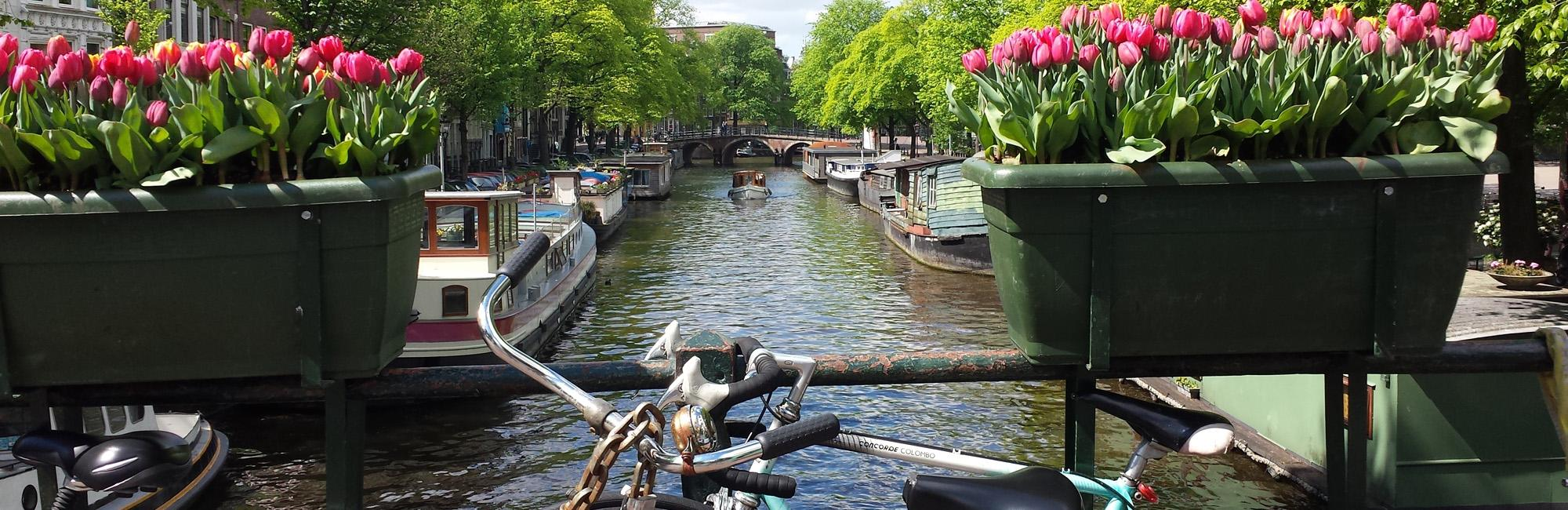 Dutch Bike Tours Radreisen Standort Amsterdam