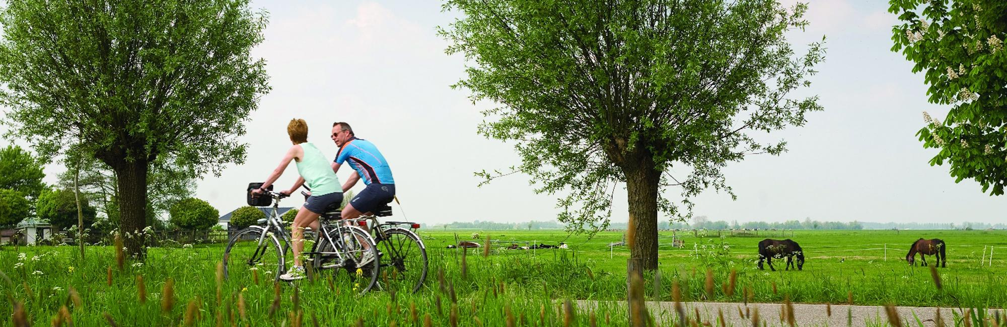 Dutch Bike Tours Radreisen IJsselmeer sportiv tour