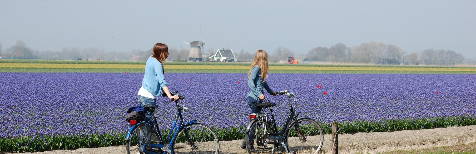Dutch Bike Tours Radreisen IJsselmeer und V.O.C. Tour